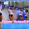 【ブルマ画像】Flower Notes ブルマーノーツ 大人ブルマ